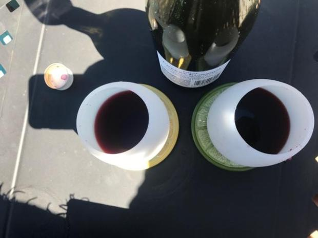 CherryBlossomGlasses